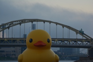 Duck by Bridge