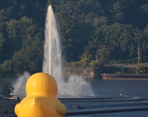 Rubber Duck enjoys the Fountain
