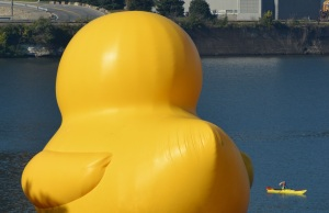 Yellow Duck