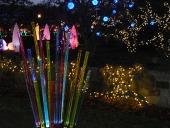 light garden242